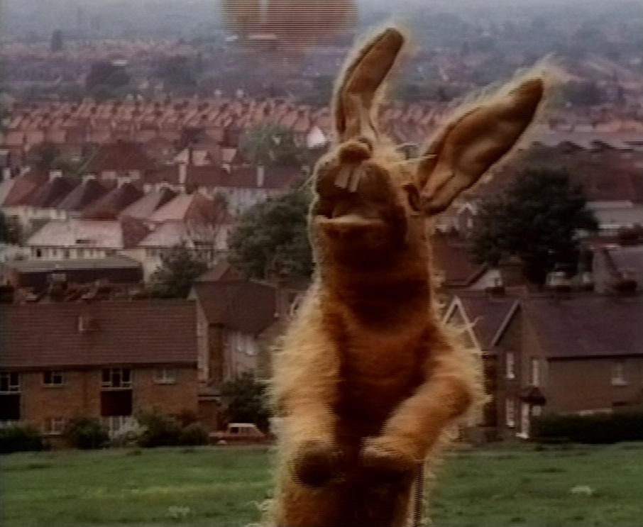 Pipkins Hartley 1
